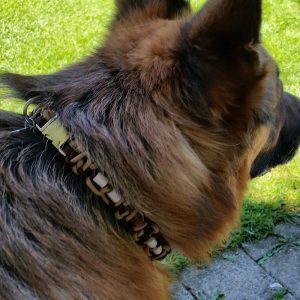 Bernstein & EM Keramik Hundehalsband