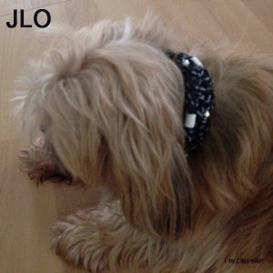 JLO mit ihrm Glow in the Dark Halsband